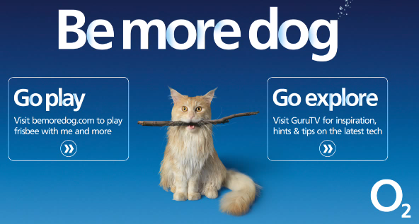 O2. Be more dog